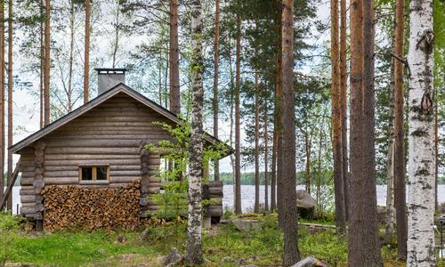 Чем отличается русская баня от финской сауны