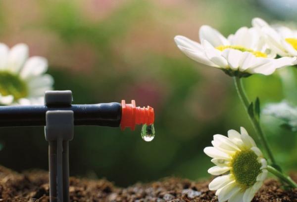 Как сделать капельный полив в огороде своими рукам