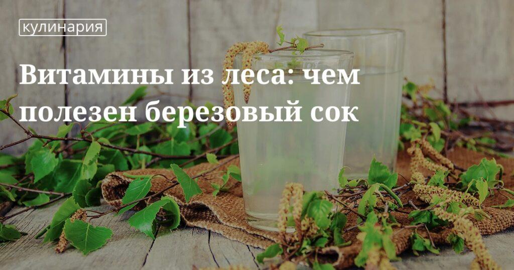 Березовый сок: польза и вред для организма человека