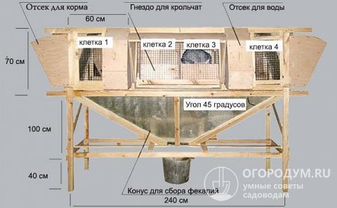 Чертеж клетки для кроликов конструкции Михайлова