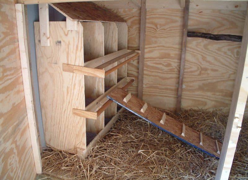 Правильно оборудованные гнезда значительно облегчают процесс яйцесбора
